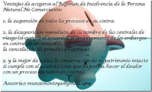 Insolvencia-Persona-Natural-No-Comerciante_thumb.jpg