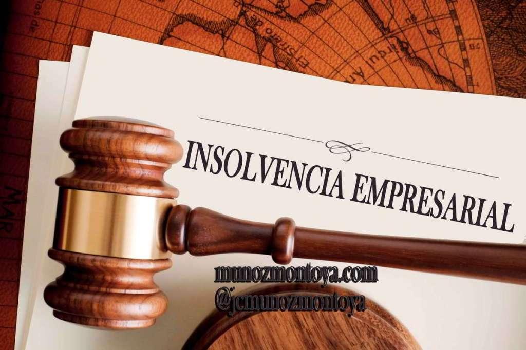 nuevo régimen de insolvencia empresarial